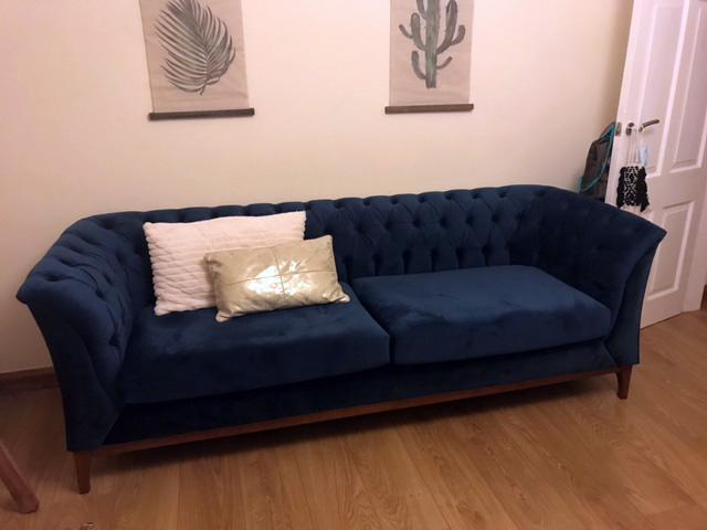 Niebieska sofa Chesterfield Modern Wood, nogi w kolorze aveo